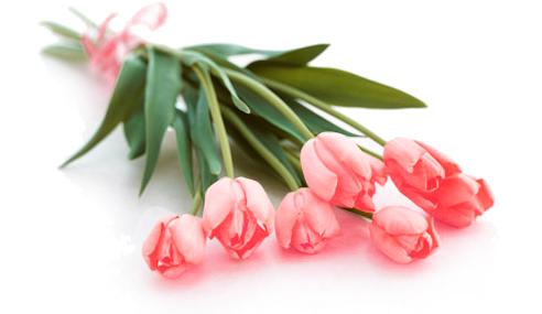 http://clubro.at.ua/flowers.jpg
